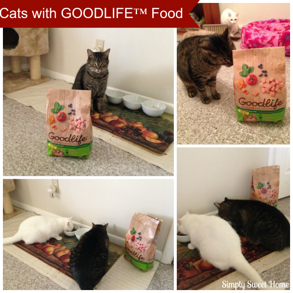Cats with Goodlife food